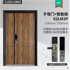 雅帝乐甲级入户门安全门防盗门进户门定制门智能锁 GB-Z-DM2020
